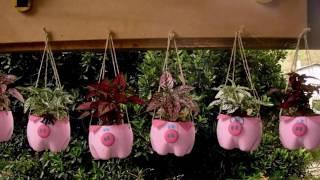 Como fazer horta com garrafa pet – Ideias Criativas
