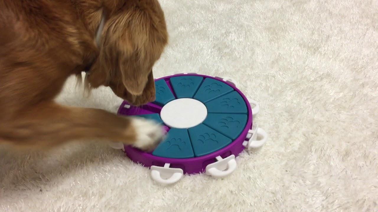 Nina Ottosson Dog Twister Animal
