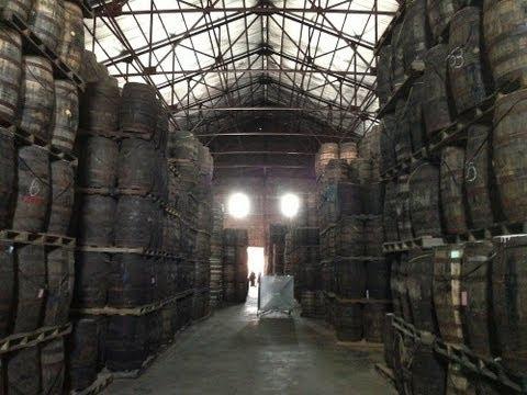 Behind The Scenes of Angostura Rum & Bitters: Trinidad Diaries Episode 2