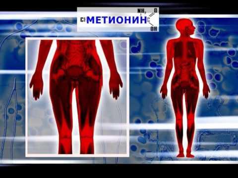 Таблица действие витаминов на организм