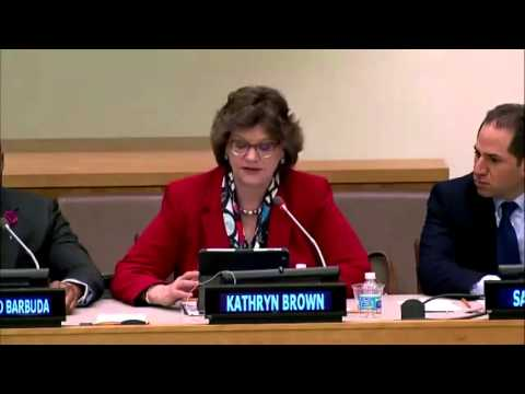 Kathy Brown speaks at Day of Women In Science at the UN