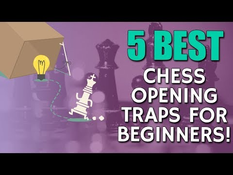 5 BEST Chess Opening Traps 🐀 for Beginners with FM Sebastian Fell!