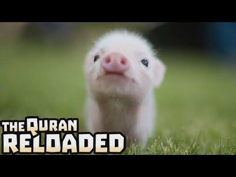 Absolutely Haram - TQR #36