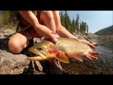 Fishing And Managing Idaho Alpine Lakes