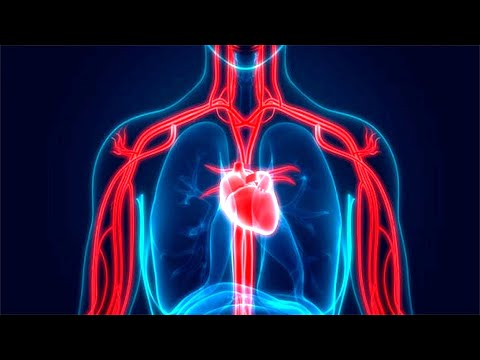 Signs That Indicate You Have Blocked Arteries!
