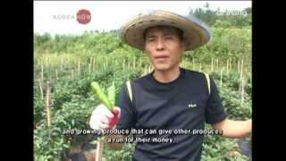 Korean Agriculture