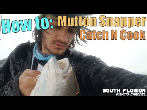 Storms, Engine Failure, Sickness Can't Stop Me | Mutton Snapper Catch N Cook