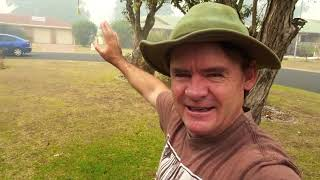 VLOG So Much Bush FIRE SMOKE  I Cant Breath Outside UPDATE