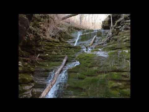 Kentucky Nature