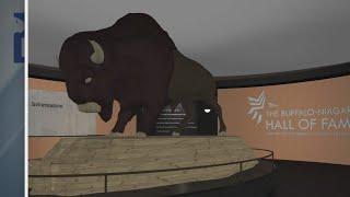 Organizations recognizing Buffalo