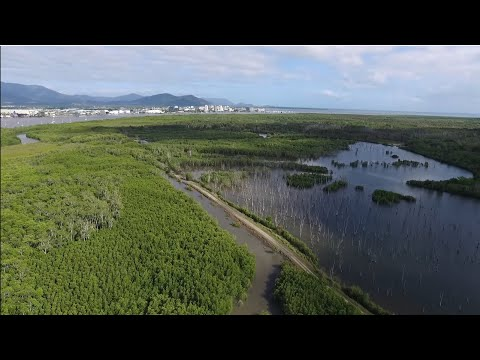Queensland COASTAL SCIENCE making a difference