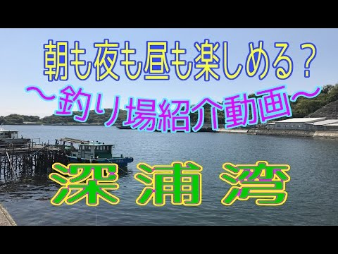 釣り場紹介 その9(深浦湾)