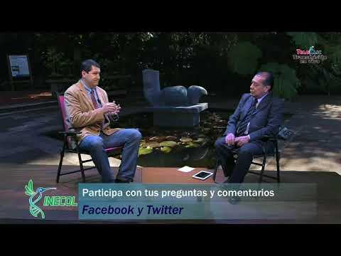 Entrevista con el director del INECOL, doctor Miguel Rubio Godoy
