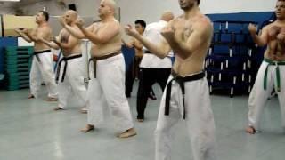 沖縄 空手道 剛柔流 Dalmo - Treinamento do Kata Sanchin (Okinawa Karate-do Goju Ryu Shobukan)