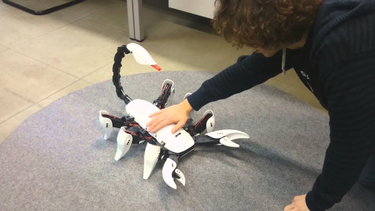 Image result for scorpion hexapod robot