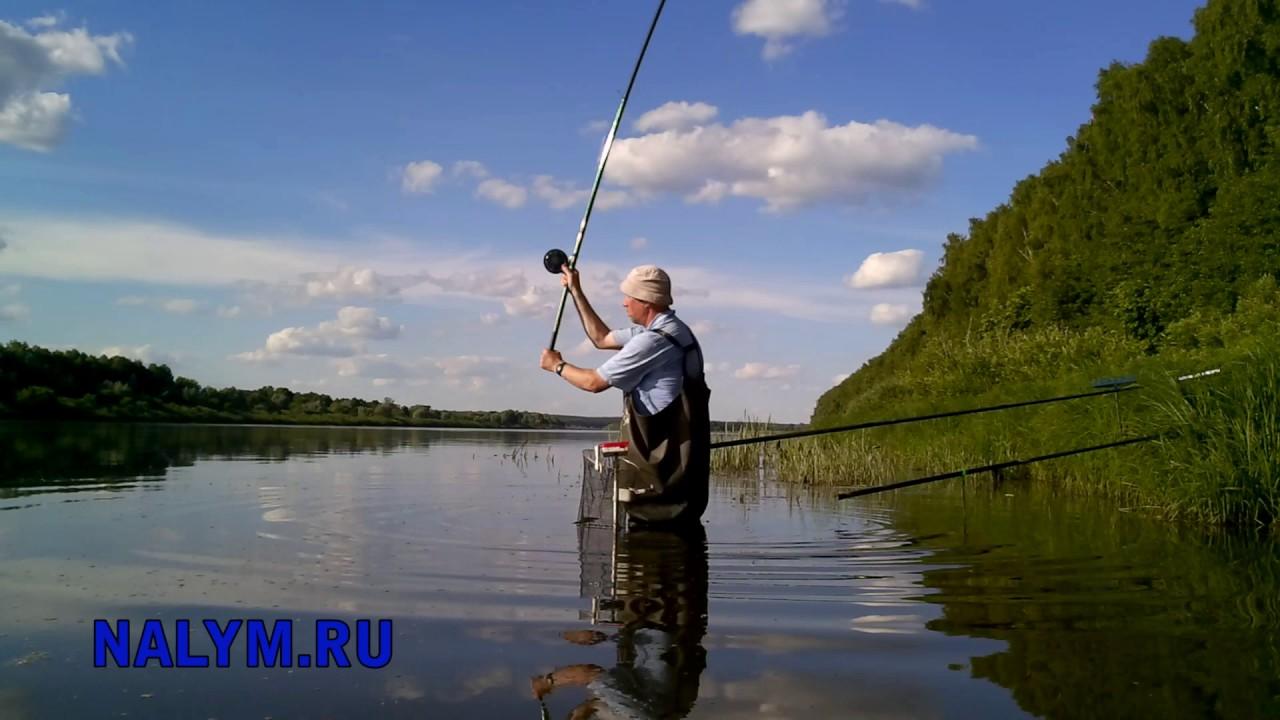 семейная рыбалка на оке