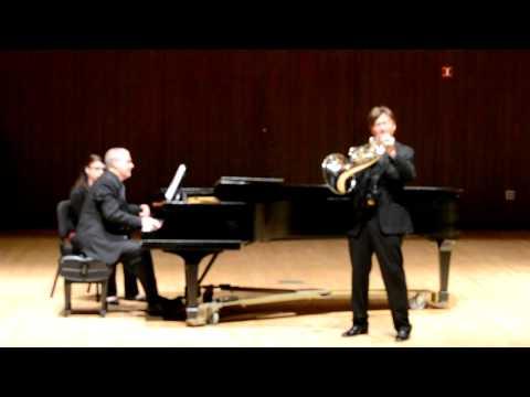 Richard Todd - Fantasiestucke Op. 73
