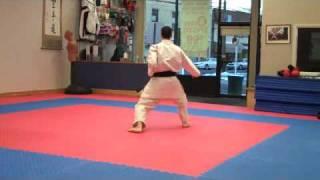 Warren Levi Karate - Taikyoku Shodan - Normal Speed.