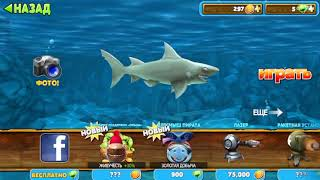 New game Hungry Shark evolution gameplay