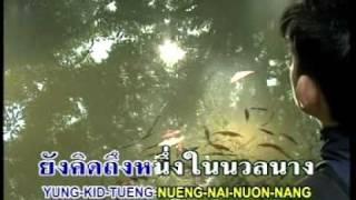 หลงป่า - ประกายเพชร สรหงษ์