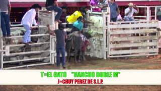 PRODUCCIONES GUERRERO JARIPEO POTOSINO PLAZA MEXICO FT.WORTH TX. 5\17\2014