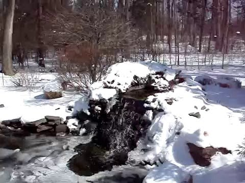 Backyard goldfish koi pond in the winter with snow and ice for Koi pond temperature winter