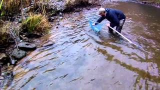 Fly Fishing Winter Steelhead - North Oregon Rivers