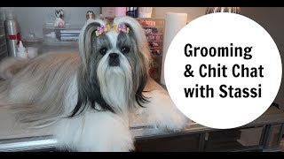 STASSI the Shih Tzu GROOMING AND CHIT CHAT