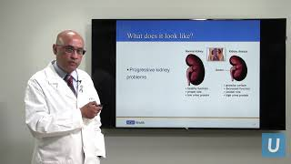 Kidney Disease: What You Should Know | UCLAMDCHAT Webinars