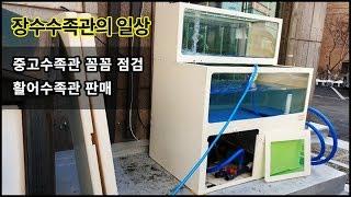 활어 횟집 업소용 중고수족관 판매 꼼꼼 점검 및 수리 …