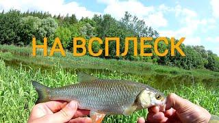 ОДНА ИЗ САМЫХ УЛОВИСТЫХ ОСНАСТОК НА МАЛЫХ РЕКАХ Рыбалка 2020 Летом на Всплеск