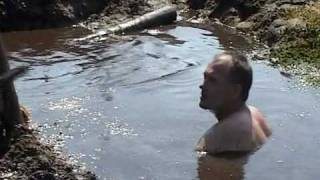 Поисковики приоткрыли тайну чагодощенских болот