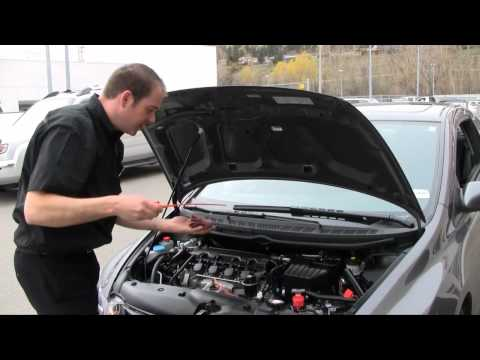 How to check the oil in your Honda - Harmony Honda