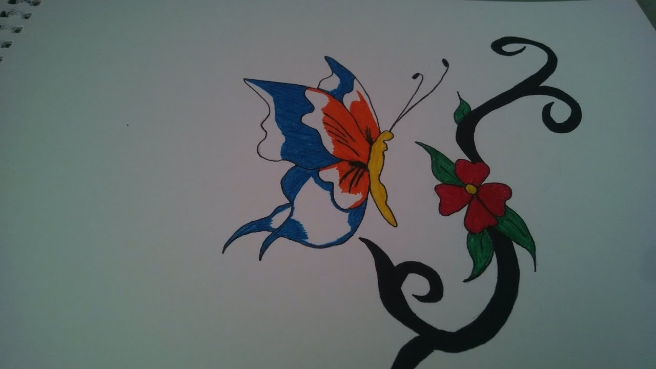 How to draw color butterfly drawing - YouTube