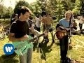 Guster - Amsterdam (Video)