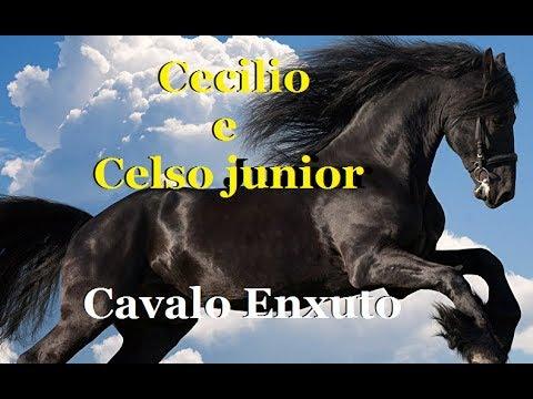 Cavalo enxuto - CECILIO ANSELMO E CELSO JR