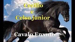 Baixar Cavalo enxuto - CECILIO ANSELMO E CELSO JR