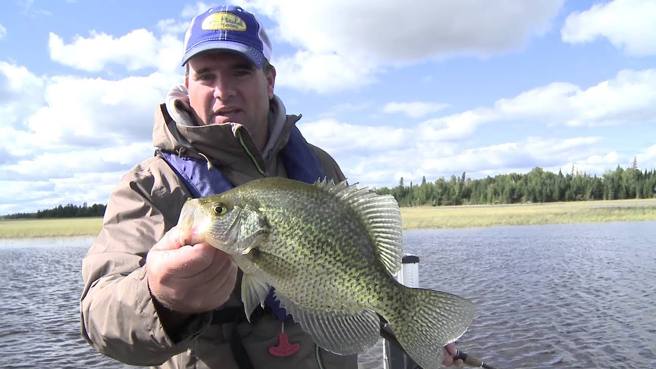 Ontario slab crappie youtube for What is a crappie fish