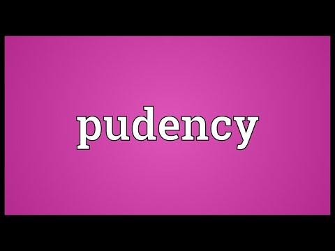 Header of pudency