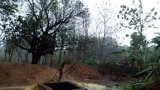 Super cyclone funny land fall in odisha ,khordha badappkharia