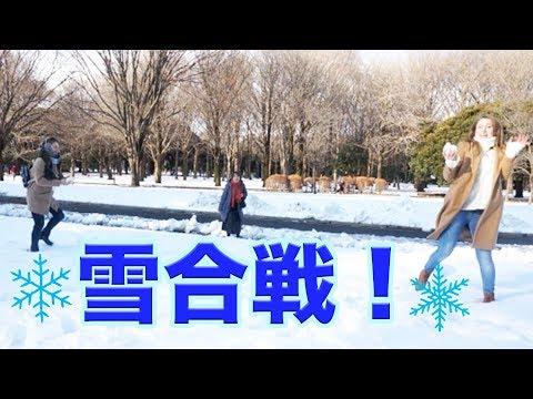 【東京大雪2018】ロシア人が嬉しくて雪合戦!!!❄️
