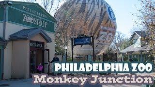 Philadelphia Zoo - Monkey Junction