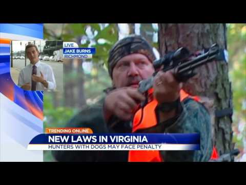 These New Virginia Laws Go Into Effect July 1