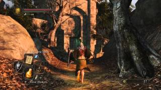Dark Souls 2: Messing with Rosabeth