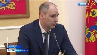 Все муниципалитеты Оренбуржья заключили контракты на отлов бездомных животных
