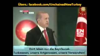 Erdogan zum Abschuss des russischen Jets: Wir unterstützen►Oppositionelle Gruppen◄