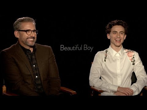 BEAUTIFUL BOY s  Timothee Chalamet, Steve Carell, Amy Ryan  Gone Baby Gone
