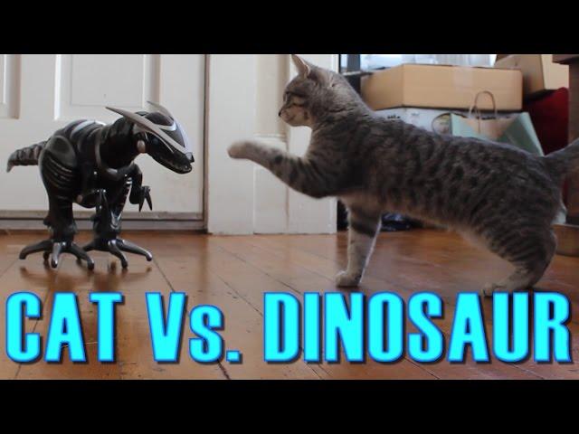 Cat Vs. Dinosaur – Cat Spooked, Then Befriends a Robot Dinosaur – Maya The Cat