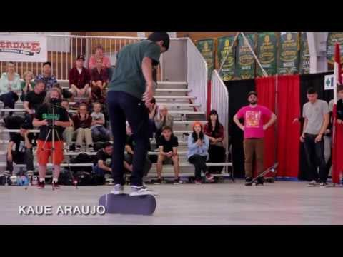 The World Round Up 2013 - Freestyle Skateboard Competition