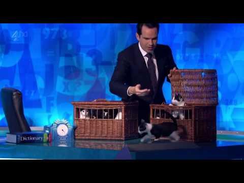 Ikea Herding Cats Parody Youtube